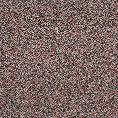 ORGANIC MUSTARD SEEDS, brown, whole