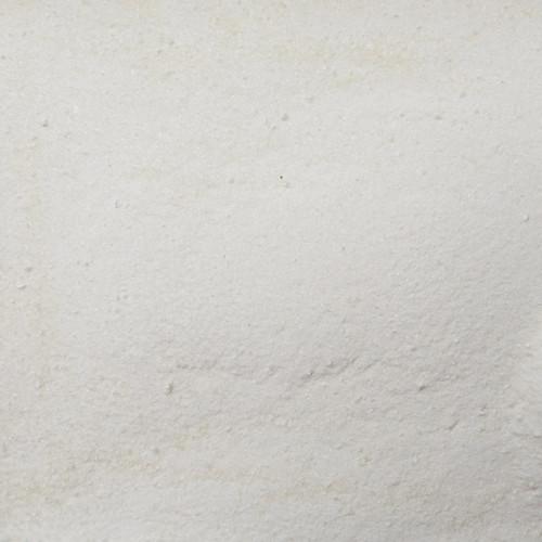 ORGANIC COCONUT WATER, powder, freeze dried