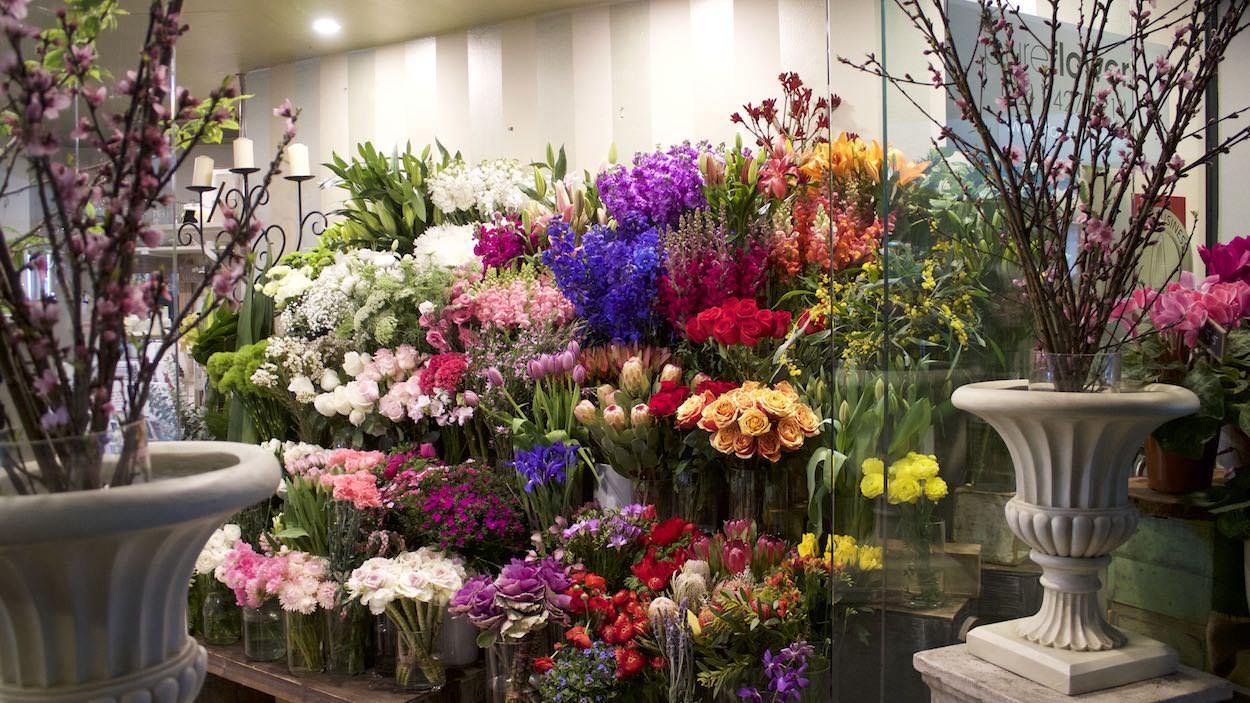 Pure Flowers Boutique Florist Lane Cove Sydney