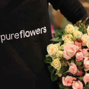 Florist Choice Vase Arrangement created by pure flowers