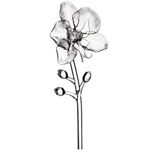 Waterford Fleurology Flower Orchid