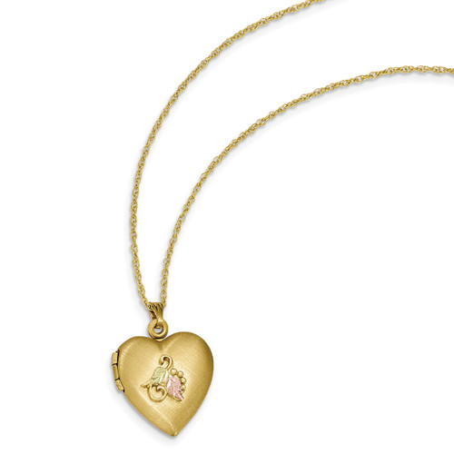 Black Hills Locket 14k Gold-filled with 12k Gold Accents 10BH673-18
