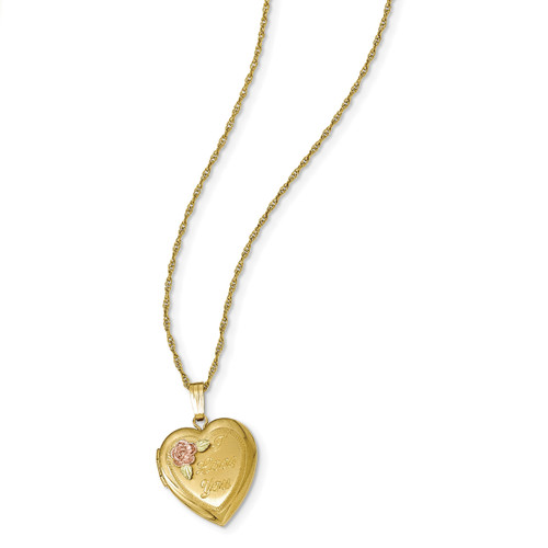 Black Hills Locket 14k Gold-filled with 12k Gold Accents 10BH680-18