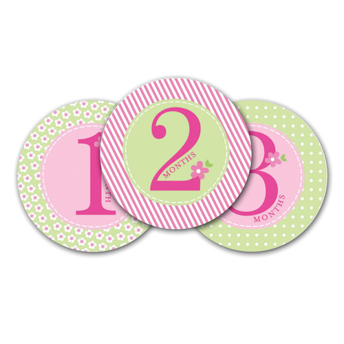 Pink Baby Milestone Stickers GM15704