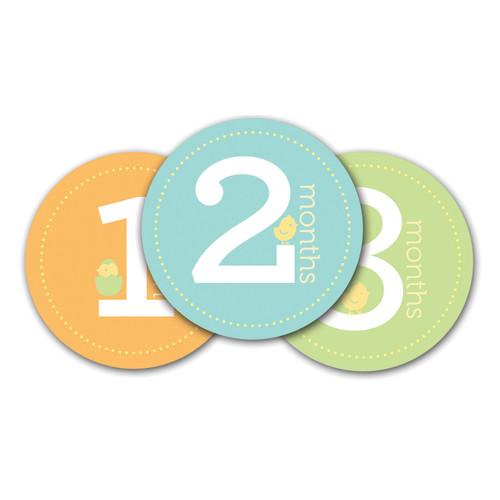 Neutral Baby Milestone Stickers GM15705