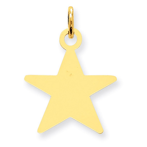Star Disc Charm 14k Gold XM543/11
