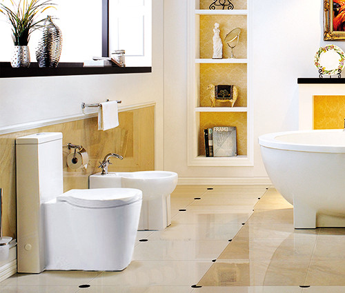 European Toilet for luxury bathroom ideas