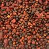 Tidymix Mixed Berry Parrot Treat - 250g