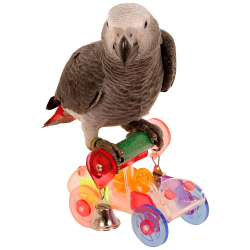 Trick Time Acrylic Parrot Toy