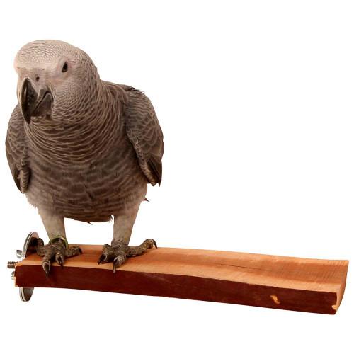 Manzanita Natural Flat Perch for Parrots & Birds - Large