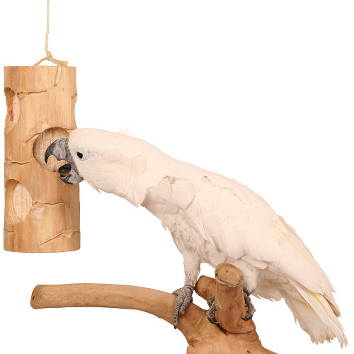 Ole Senior Bird Kabob - Chunky Chewable Parrot Toy