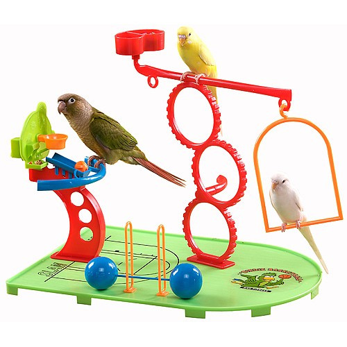 Birdie Basketball Gym