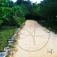 Bacab Sandy Path