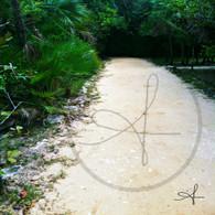 Bacab Path