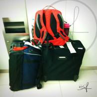 Budapest Luggage
