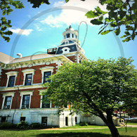 Courthouse and Tree