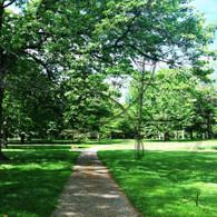 Crapo Park Walking Path