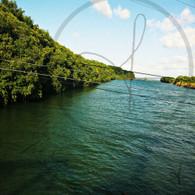 Belize River from Highway Bridge