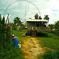 Belize Shack House
