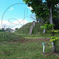 Altun Ha Small Ruins Steps