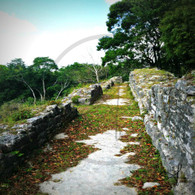 Altun Ha Stone Lane