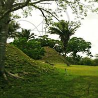 Altun Ha Mound View