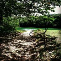 Belize Jungle Path to River