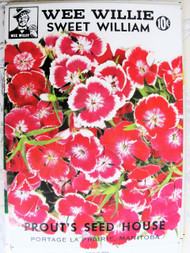 Vintage Seed Packet Sweet William