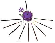 Wild Berry® Incense Shorties™ Sampler #2