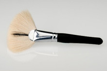 Deluxe Fan Brush