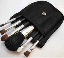 6 Piece Brush Set with Protective Case