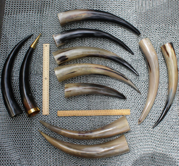 Set of 11 Drinking Horns (exactly as pictured)