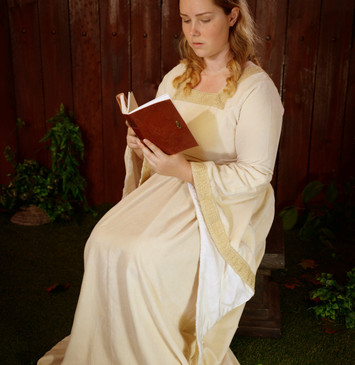 Medieval Princess Gown