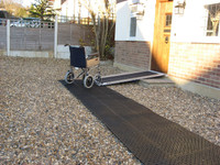 Roll Out Trackway - In Situ