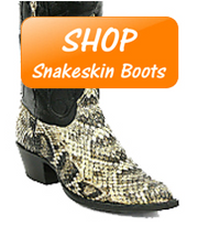 Why you should own a pair of Snake Skin Boots
