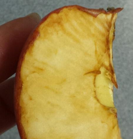 oxidation-rust-apple.jpg