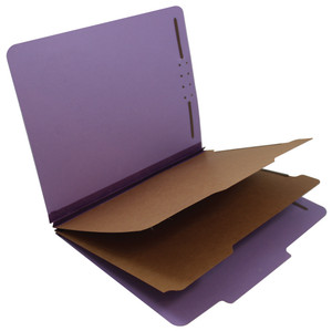 Custom 18pt. Classification Folders