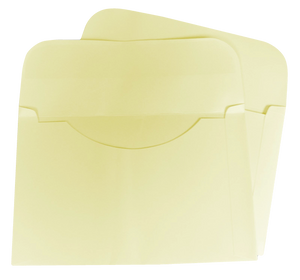 Ivory Tag Envelopes