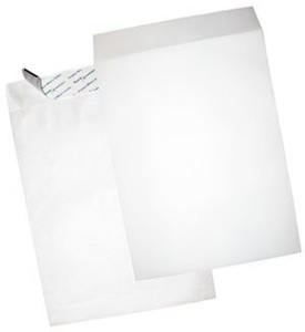 "Tyvek 5 x 100 Packs - 9-1/2"" x 12-1/2"", Plain"