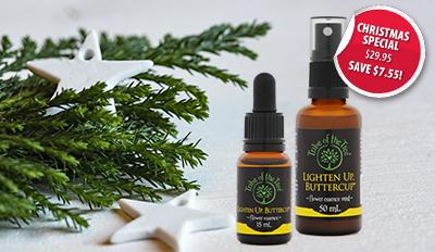 Lighten Up Buttercup flower essence kit