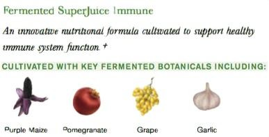 sj-immune-herbs.jpg