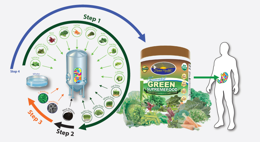 Fermented Green Supremefood Unsweet