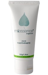 Travel Toothpaste Mint 1.8 oz Tube