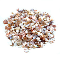 Crushed Shells - Small Pieces - Pearlized Natural - 22 oz