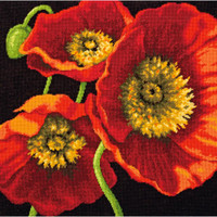 Dimensions – Red Poppy Trio