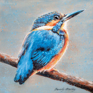 BM76819- Kingfisher (6 blank cards)