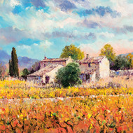 DO66920 - Autumn Vineyards in Provence (6 blank cards)