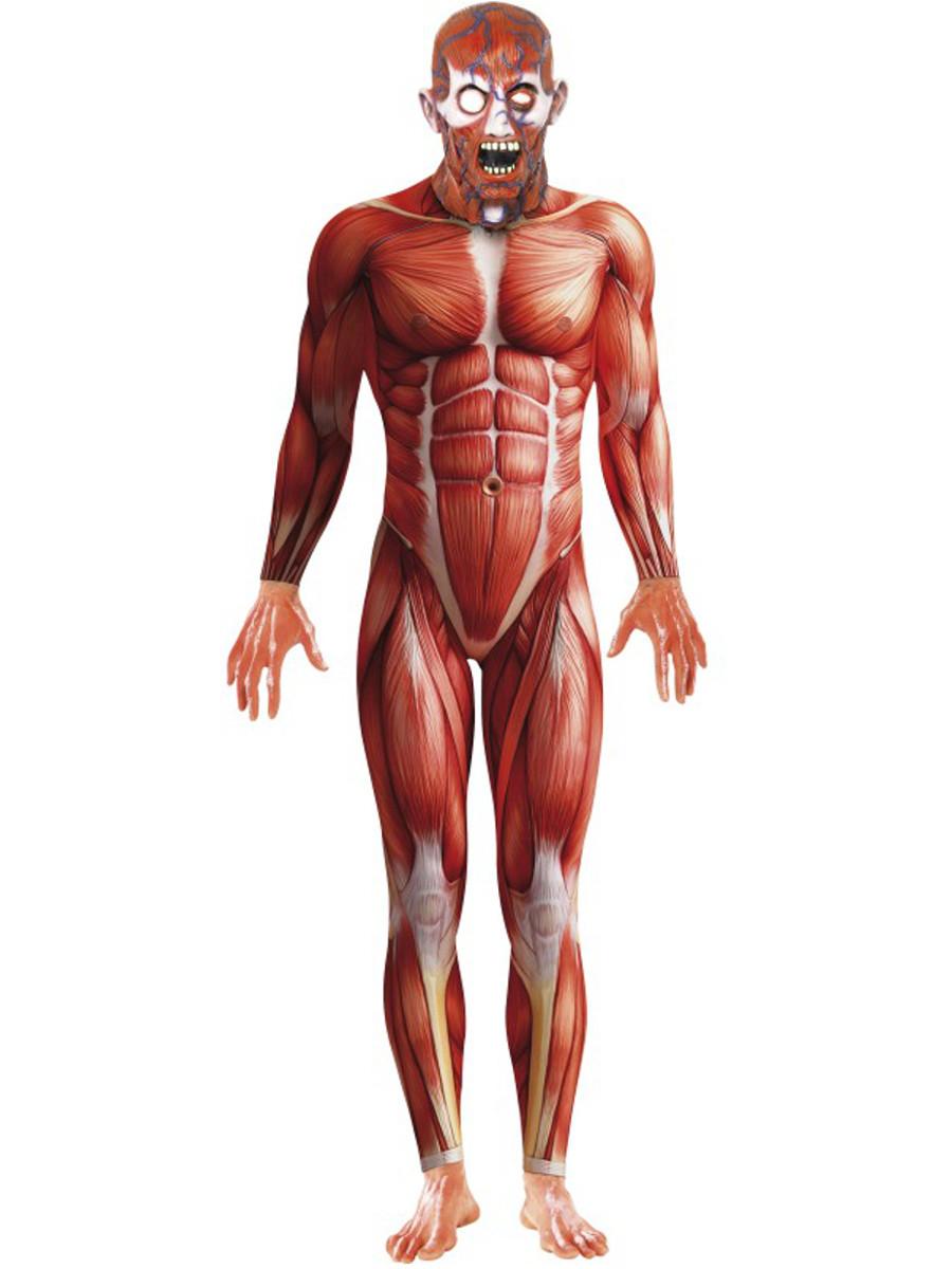Mens Anatomy Body Suit