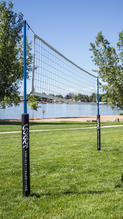 Cobra Volleyball Set