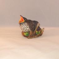 Fledgling Cuckoo 2007